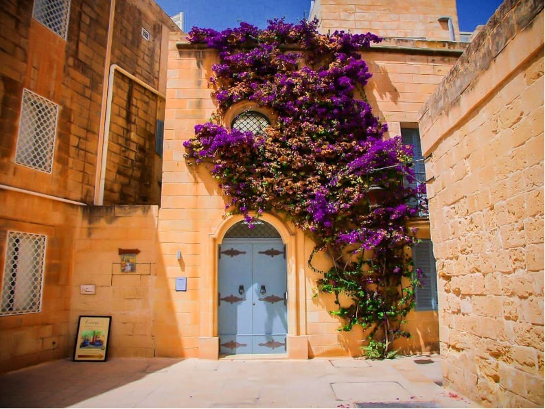 Mdina colourful doors